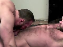 Big beefy bearded bears bareback